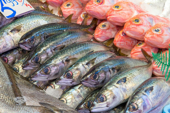Fresh fish for sale at a market - Stock Photo - Images