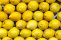 Fresh lemons for sale - PhotoDune Item for Sale