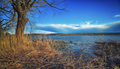 Lake shore and a beautiful cloudscape - PhotoDune Item for Sale