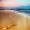 Magnificent long exposure sea sunset - PhotoDune Item for Sale