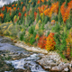 Autumn creek woods with colorfull trees foliage and rocks in for - PhotoDune Item for Sale
