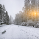 Snow-covered trees and benches in the city park - PhotoDune Item for Sale