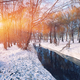 Scenic view of the river and trees covered by snow - PhotoDune Item for Sale
