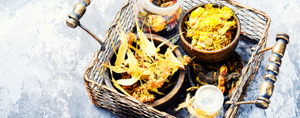 Basket with medicinal herbs - Stock Photo - Images