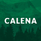 Calena – Minimal Multi-Purpose Portfolio WordPress Theme - ThemeForest Item for Sale