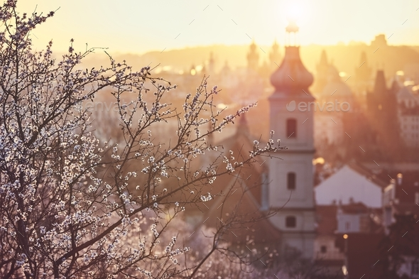 Spring sunrise in Prague - Stock Photo - Images