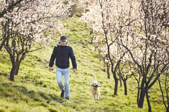 Man with dog in spring nature - Stock Photo - Images