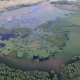 Aerial Shot of a Small Swampy Lake in the Dnipro Basin with Wild Green Wetland - VideoHive Item for Sale
