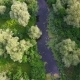 Windy Stream in the Dnipro Area with Trees and Spatter - VideoHive Item for Sale