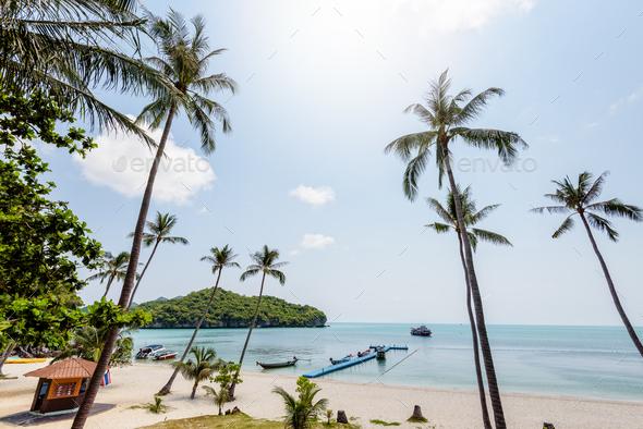 Sea and beach of Ko Wua Ta Lap - Stock Photo - Images