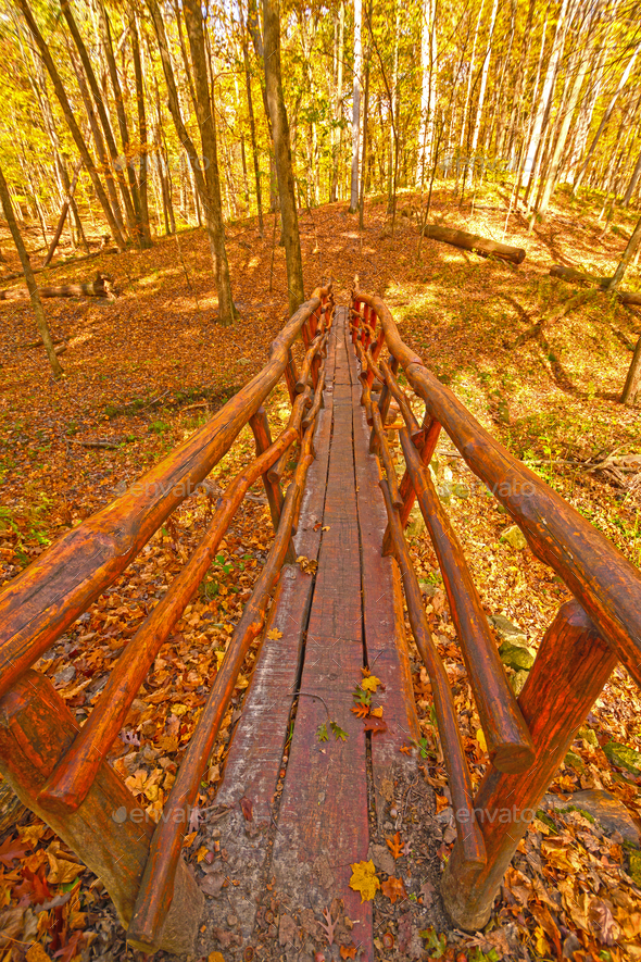 Hand Crafted Bridge in the Wilderness - Stock Photo - Images