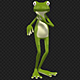 Frog 3d Character - Rumba Dance - VideoHive Item for Sale