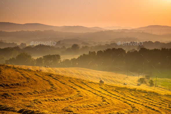 Tuscan Countryside at Dawn, Italy - Stock Photo - Images
