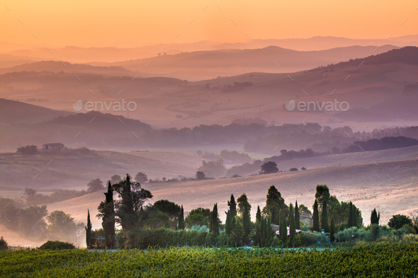 Tuscan Farmland during Sunrise, Italy - Stock Photo - Images