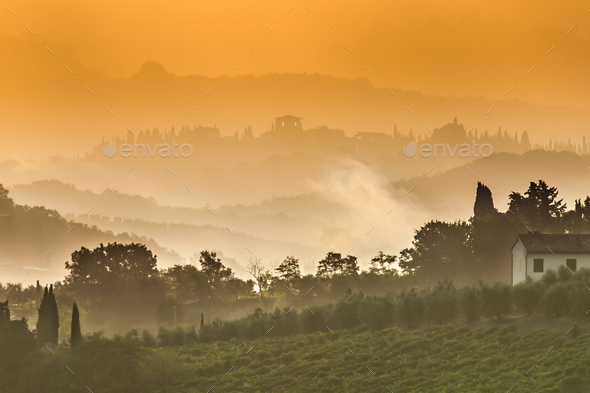 Tuscany Landscape on a Foggy Morning in July - Stock Photo - Images
