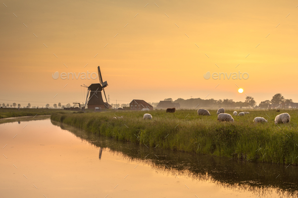 Dutch Polder Landscape during Orange Sunset - Stock Photo - Images