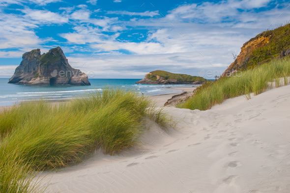 Dune vegetation at Famous Wharariki Beach, South Island, New Zea - Stock Photo - Images