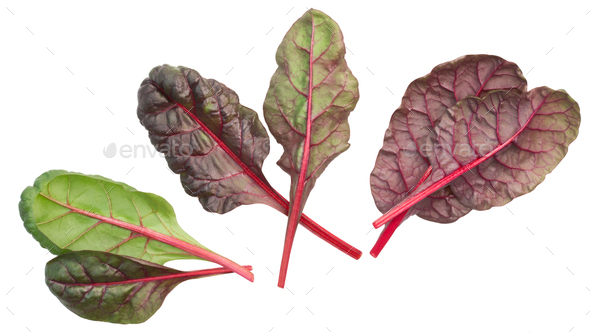 Chard mangold beta vulgaris leaves, top, paths - Stock Photo - Images
