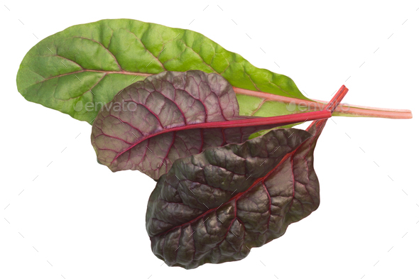 Chard mangold beta vulgaris leaves, top, paths - Stock Photo - Images