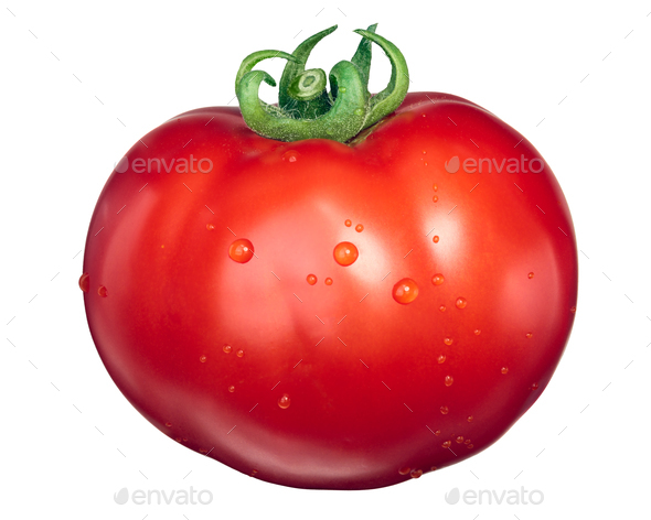 Large Marglobe tomato, top view - Stock Photo - Images