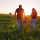 Rear View: A Happy Couple of Parents with a Small Son Are Walking Across the Field Towards the - VideoHive Item for Sale