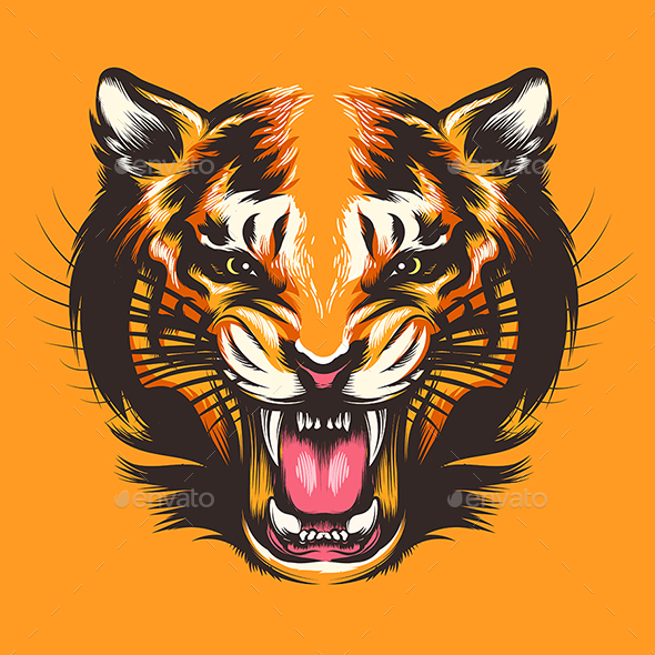Colorful Tiger Face Illustration - Animals Characters