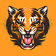 Colorful Tiger Face Illustration - GraphicRiver Item for Sale