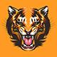 Colorful Tiger Face Illustration