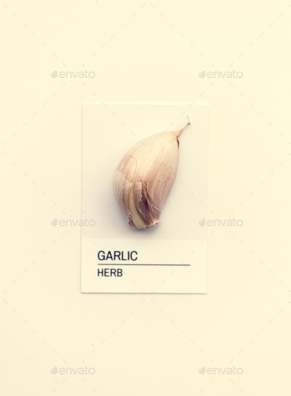 Garlic herb - Stock Photo - Images