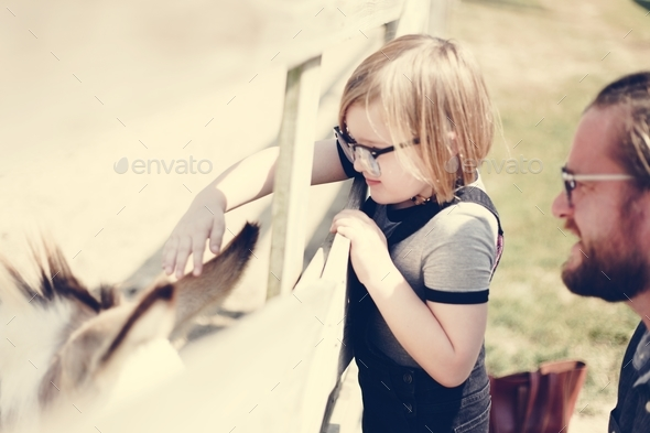 Young girl with a horse in the field - Stock Photo - Images