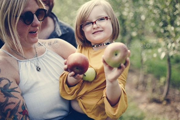 Little girl holding some apples - Stock Photo - Images