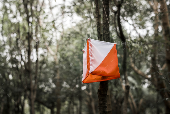 Orienteering box outdoor in a forest - Stock Photo - Images