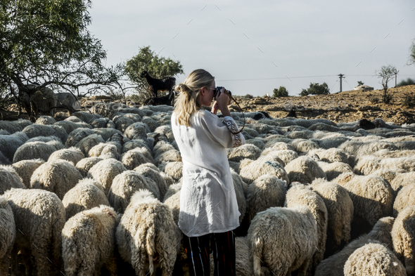 Blonde woman among a flock of sheep - Stock Photo - Images