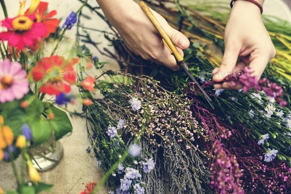 Woman arranging and decorating flowers - Stock Photo - Images