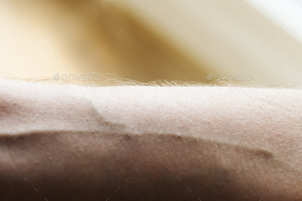 Closeup of a human arm and vein - Stock Photo - Images