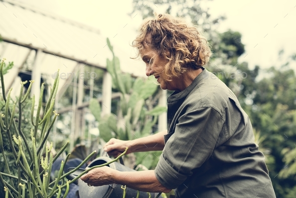 Woman gardening - Stock Photo - Images
