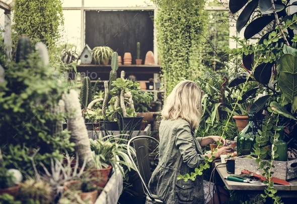 Woman working in a garden shop - Stock Photo - Images