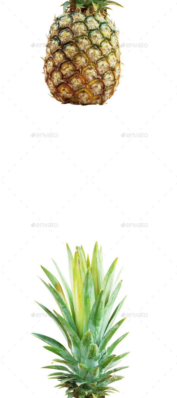 Pineapple with white background - Stock Photo - Images