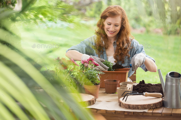 Blog about gardening equipment - Stock Photo - Images