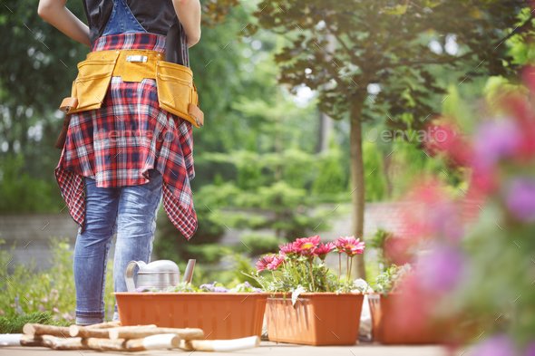 Professional gardener at work - Stock Photo - Images
