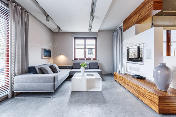 Grey modern living room - Stock Photo - Images