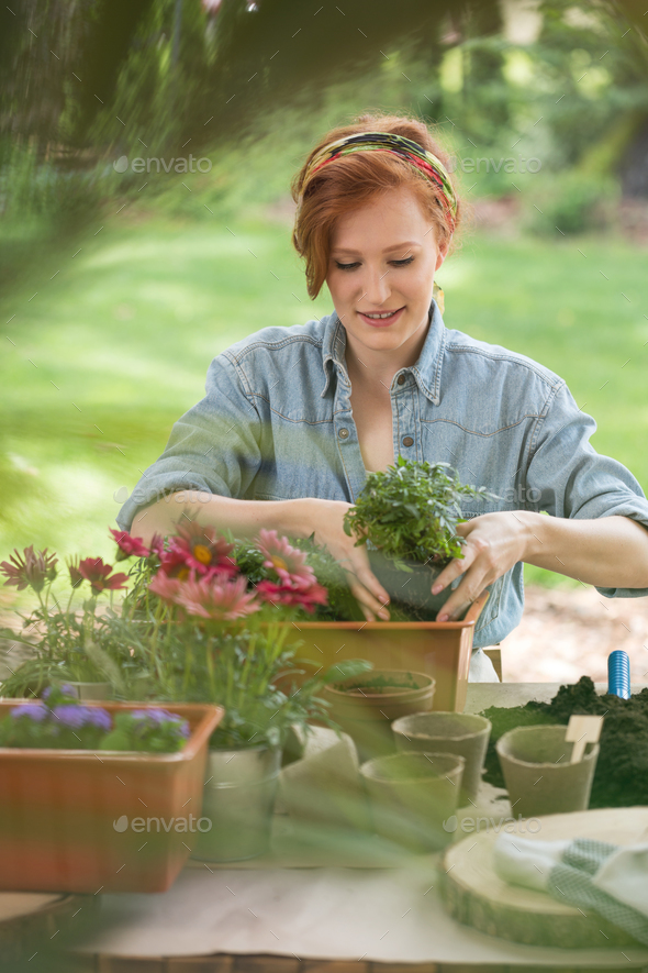 Girl replanting flowers - Stock Photo - Images