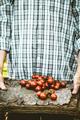 Tomatoes - PhotoDune Item for Sale
