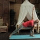 Blond Lady Is Having Yoga Training in the Morning in Her Bedroom. - VideoHive Item for Sale