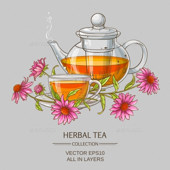 Cup or Echinacea Tea and Teapot - Health/Medicine Conceptual