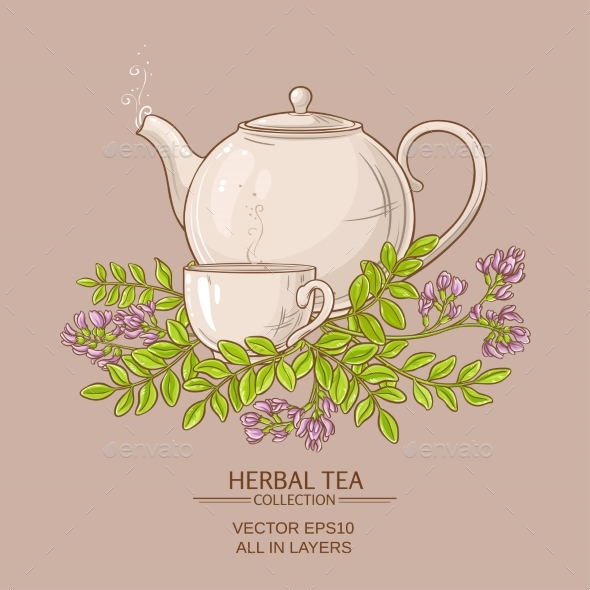 Astragalus Tea Illustration - Food Objects