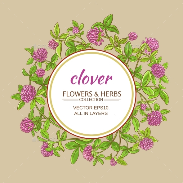 Clover Vector Frame - Flowers & Plants Nature
