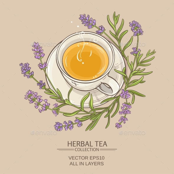 Lavender Tea Illustration - Health/Medicine Conceptual