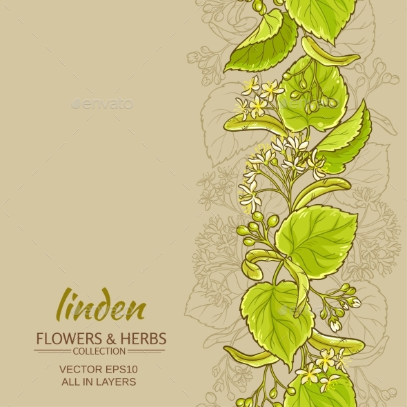 Linden Vector Background - Nature Conceptual