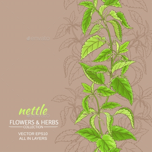 Nettle Vector Background - Flowers & Plants Nature